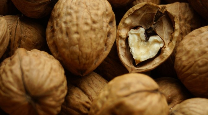 Walnuts – food for the mind and not only