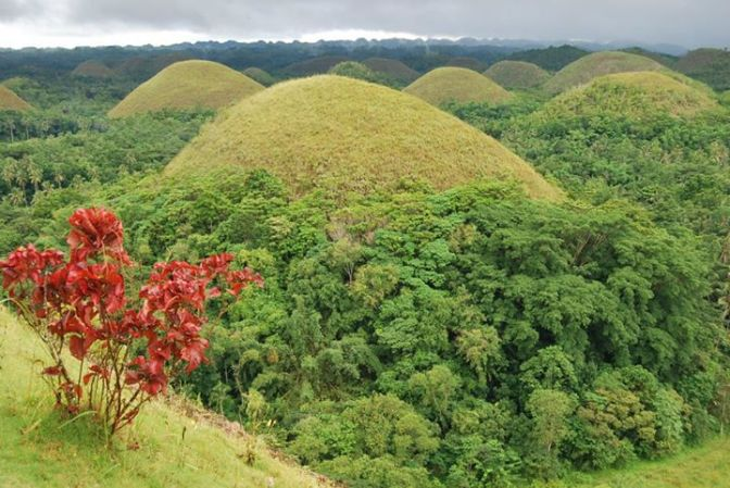Chocolate_Hills_in_Bohol